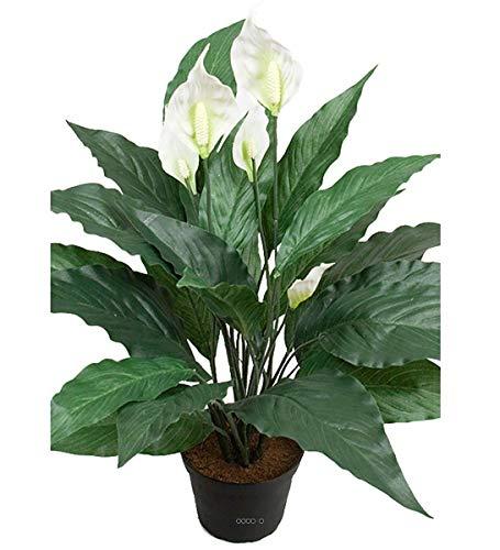 Artificielles Künstliches Einblatt (Spathiphyllum) in Topf, Höhe 50cm, 20Blätter und 5Blüten