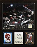C & I Collectables NHL Joe Louis Arena Plaque, Styles kann variieren -