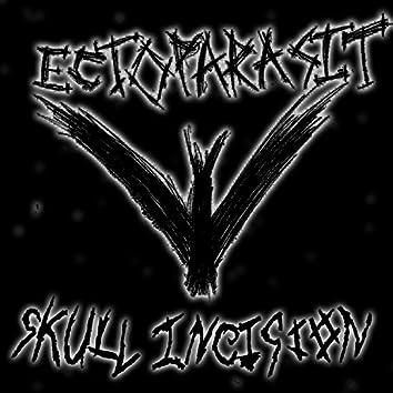 Ectoparasit