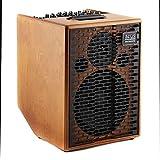 Acus One Cremona · Acoustic Guitar Amp