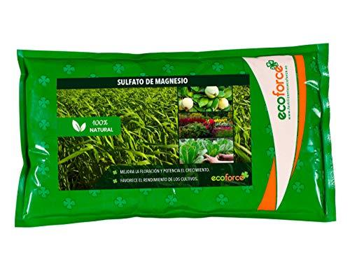 CULTIVERS Sulfato de Magnesio de 1,5 kg. Abono Universal ecológico 100% Natural. Favorece el Crecimiento de Cultivos, Jardines y Plantas de Interior. Fertilizante de Magnesio Alta solubilidad