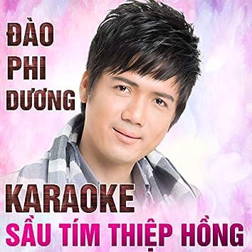 Sầu tím thiệp hồng - Đào Phi Dương (Instrumental)