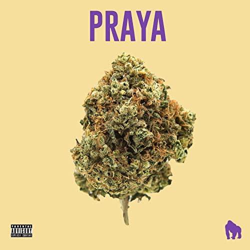 JayA Luuck, Predella, Pedro Lotto, Paiva Prod & White Monkey Recordings