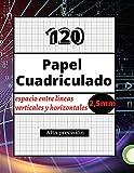 120 Papel Cuadriculado 2,5mm: Alta precisión / Para profesionales y estudiantes / Papel Gráfico / Espacio entre líneas 2,5mm / 215,4 X 279,4 mm / 120 páginas