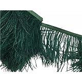 TOMASELLI MERCERIA 50 cm Pasamanería pluma natural avestruz de color liso para bordar prendas de raso de 15 cm de alto – Verde botella