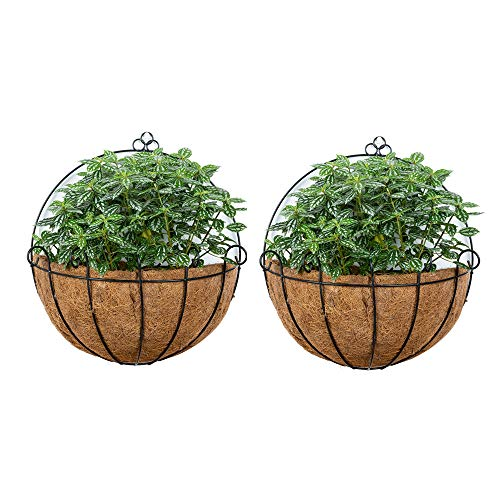 2 Stück Zaun Hängende Pflanzgefäße Metall Wand Pflanzgefäß Hängende Pflanze Korb Metall Hängende Pflanzgefäße mit Kokosnuss-Liner für Pflanzgefäße, Draht Große Hängende Pflanzgefäße Außenpflanzen