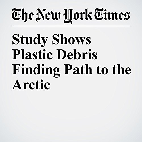 Study Shows Plastic Debris Finding Path to the Arctic copertina