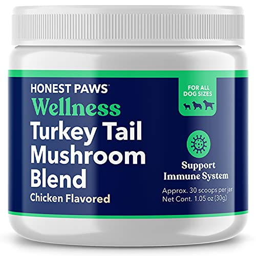 Honest Paws - Dog Turkey Tail Mushroom Blend - Made in USA - Digestive and Immunity Booster for Dogs - Shiitake  Reishi  Maitake Mushroom Extract Formula - No Filler  No Additives (1.5 oz)