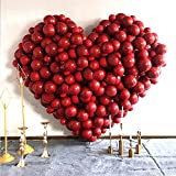 Baanuse 100pcs Globos de San Valentín, 10 Pulgadas Rojos Globo para San Valentín Bodas Nupcial Compromiso Decoración Fiesta