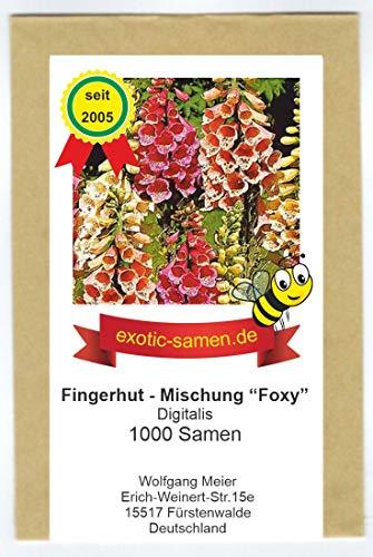 Digitalis - Fingerhut - zweijährig - Bienenweide - Samenmischung Foxy - 1000 Samen
