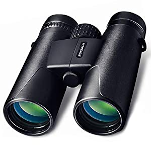 10x42 Binoculars for Adult Teenagers Compact Binoculars Wide Angle Weak Light Night Vision Waterproof Binoculars with Bag and Strap for Bird Watching, Hunting, Safari, Sports,Concert(Black)