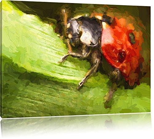 Pixxprint Marienkäfer in Detailaufnahme als Leinwandbild   Größe: 100x70   Wandbild  Kunstdruck   fertig bespannt