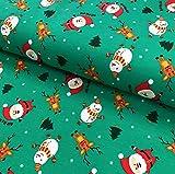 RosaliNum 0,5m Jersey dunkelgrün Weihnachtsmann,