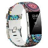 Fit-power - Correa de repuesto para Fitbit Charge 2, accesorio ajustable para pulsera de actividad física Fitbit Charge 2, pequeña y grande, Type1, Small Size