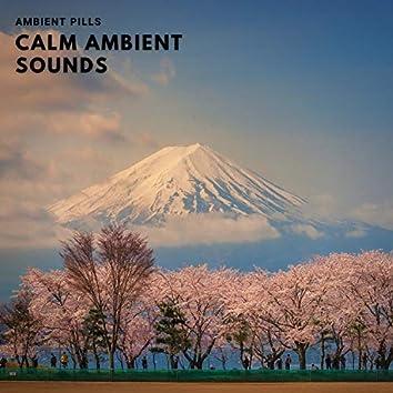 Calm Ambient Sounds