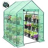 EAGLE PEAK Mini Walk-in Greenhouse 2 Tiers 8 Shelves...