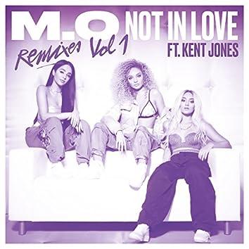 Not In Love (Remixes Vol. 1)