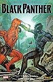 Black Panther: Bd. 5: Götterdämmerung über Wakanda