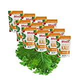 Brad's Plant Based Organic Crunchy Kale, Cheeze It Up, 12 Bags, 24 Servings Total