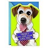 Hallmark Cute Father's Day Card (Dog with Googly Eyes) (599FFW1031)
