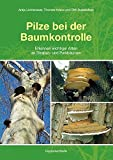 Pilze bei der Baumkontrolle: Erkennen wichtiger Arten an Straßen- und Parkbäumen - Antje Lichtenauer