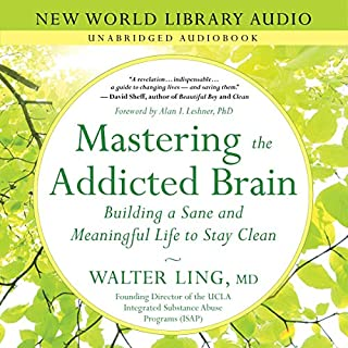 Mastering the Addicted Brain cover art