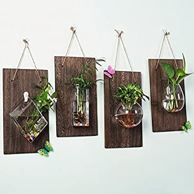 Ivolador Wall glass hanging planter with wooden board for Wall background decoration (Wood + round cake vase)