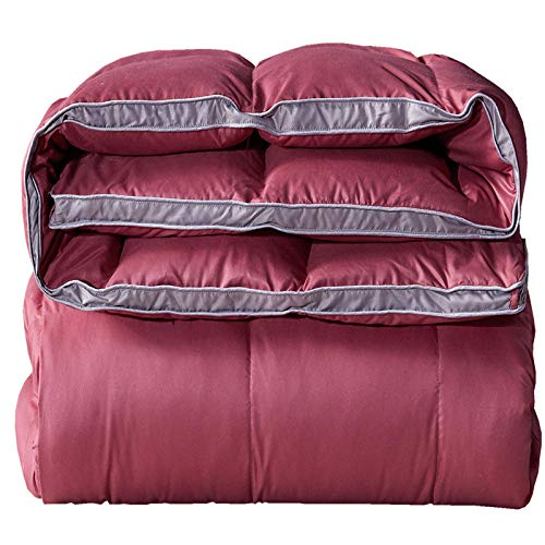 CHOU DAN Duvet Double Bed 15 Tog,Duvet 95 White Goose Down Winter Quilt Thickened Winter Spring And Autumn Quilt Double Single Student Dormitory Quilt White Duck Down-Red_180x220 4 Kg