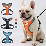 Best Reflective Dog Harness - Safe...