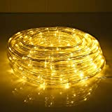 33ft 240 LED Rope Lights, Waterproof Rope Lights Outdoor, Low Voltage, Connectable,Warm Clear Tube Light Rope and String for Deck, Pool, Patio, Camping, Landscape Lighting Decorations (Warm White)