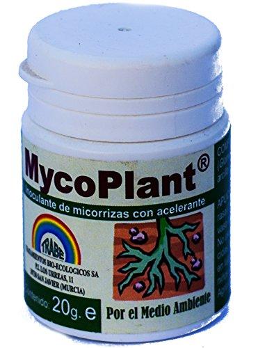 Trabe - Micorrizas 20g. MycoPlant