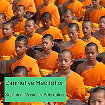 Diminutive Meditation - Soothing Music For Relaxation