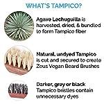 ZEUS Vegan Handle Beard Brush, Natural Plant Fiber Tampico Bristles and Walnut Handle, Made in Germany, FIRM - J73 7