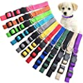 Puppy ID Collar Identification Soft Nylon Adjustable Breakaway Safety Whelping Litter Collars for Newborn Pets with Record Keeping Charts 12pcs/Set (S)