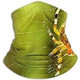 Linger In Diadema Pasamontañas Araña en telaraña Calentador de Cuello Casco Forro Sombrero