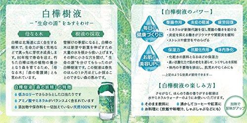 白樺樹液100% 森の妖精 (2019年採取分 賞味期限:2021年5月7日)