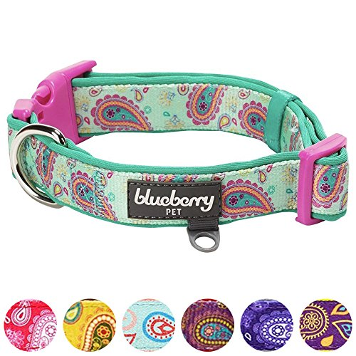 Blueberry Pet 1,5cm S Paisley-Druck Inspiriertes Ultimatives Hell-Smaragdgrün Neopren-Gepolsterte Hundehalsband, Kleine Halsb?nder für Hunde - 6