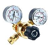 4YANG Argon CO2 Regulators Gauges Gas Welding Regulator CGA580 Compatible with Miller Lincoln Mig Tig Weld 0-4500PSI / 0-10BAR