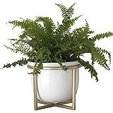 La Jojie MUSE - Maceta decorativa de cerámica redonda de 17 cm, con soporte de metal dorado para suculentas, cactus y hierbas modernas, decoración del hogar, color blanco