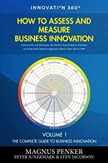 How to Assess and Measure Business Innovation (The Complete Guide to Business Innovation)
