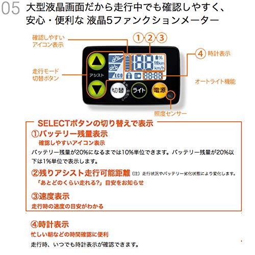 Yamaha(ヤマハ)『PASCheer』