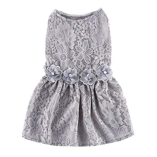 Pun Vest shirt kant jurk gestreepte print jurk kleding huisdier hond kleding lente en zomer hond kleding,H,Kleur