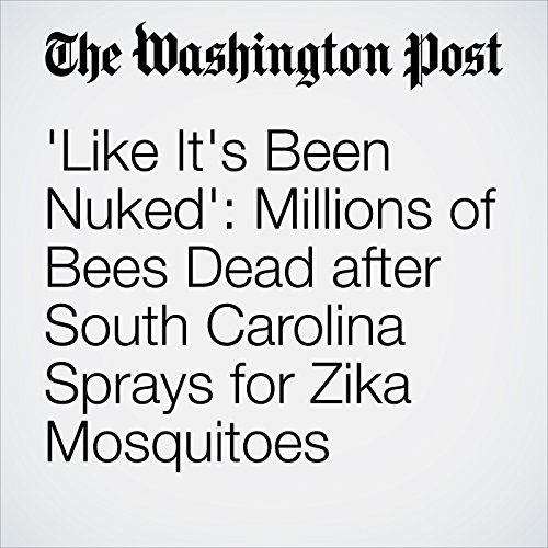 'Like It's Been Nuked': Millions of Bees Dead after South Carolina Sprays for Zika Mosquitoes audiobook cover art