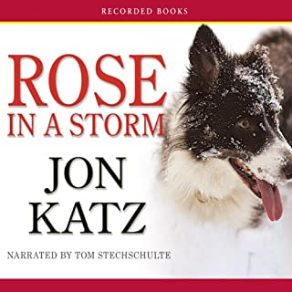 Rose in a Storm audiobook cover art