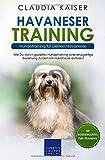 Havaneser Training - Hundetraining für Deinen Havaneser: Wie Du durch gezieltes Hundetraining eine einzigartige Beziehung zu Deinem Hund aufbaust