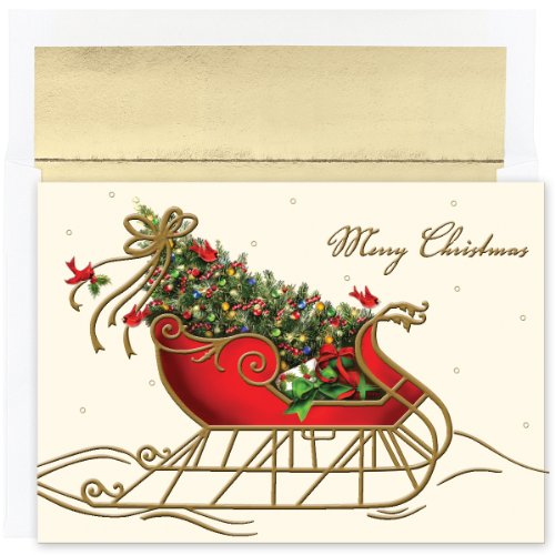 Masterpiece Studios Holiday Collection 16-Count Boxed Embossed Christmas Cards with Foil-Lined Envelopes, 7.8' x 5.6', Holiday Sleigh