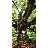 Baeume 2016