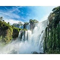 数字油絵 数字キット塗り絵 手塗り DIY絵 デジタル油絵 滝 3ブラシホーム オフィス装飾 40 x 50 CM (フレームレス)