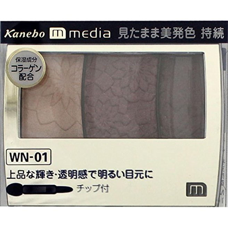 はさみ困惑マイクロフォン【カネボウ】 メディア グラデカラーアイシャドウ WN-01