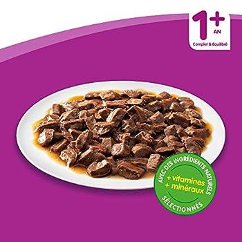 Whiskas Sélection Classique en Sauce – Nourriture humide pour chat adulte – Alimentation complète en sachets fraîcheur – 2 x 24 x 100g